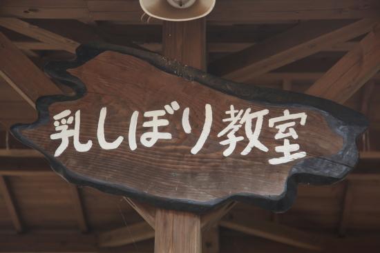 ゆめ牧場 (22)