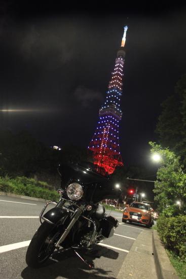 東京タワー (1)