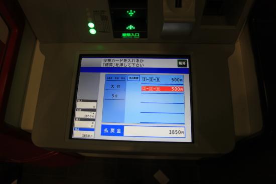 大井競馬 (107)