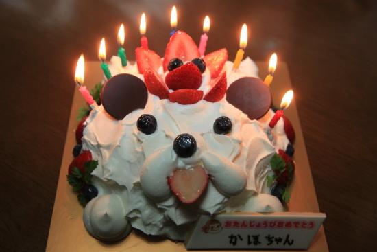 花歩9歳誕生日 (10)交換