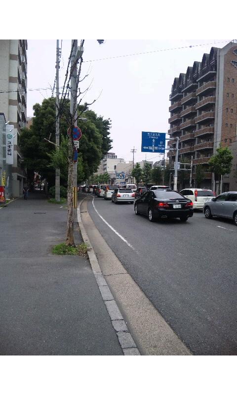 nyakuichi1.jpg