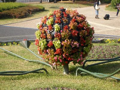 ohananobo-ru.png