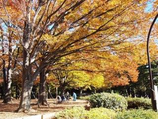 駒沢オリンピック公園 (1)