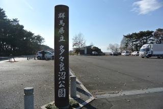 多々良沼 (8)