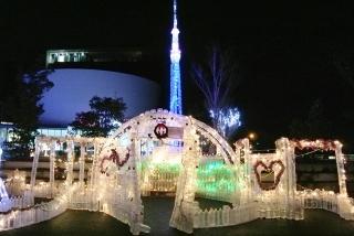 フレサよしみ 2013 (3)