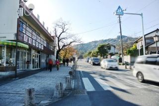 天然氷蔵元 阿左美冷蔵 寶登山道店 (4)