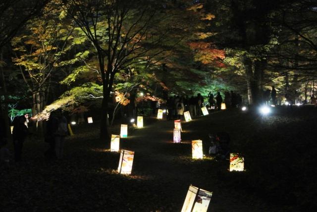国営 武蔵丘陵森林公園 (22)