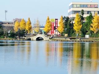 風景 2014年 秋 (9)