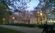 ☆大阪在住時々ネパール☆がねちゃんのヒーリング日記-120417_183547.JPG