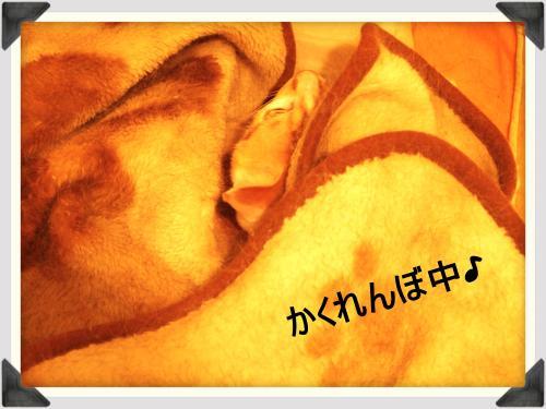 o-matic+(90)_convert_20110718214508.jpg