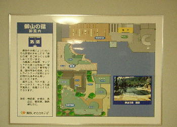 iwasaki1.jpg
