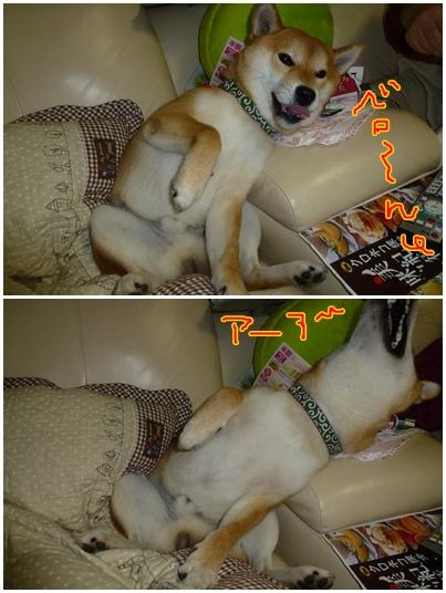 24-5-12-2.jpg