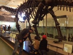 NY博物館1