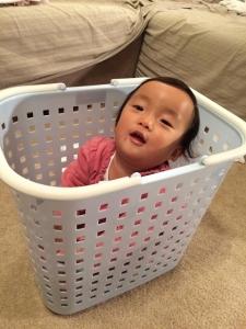 洗濯かごの中~