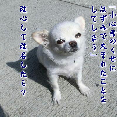 131210-あ銀ちゃん-3
