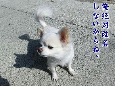 131210-あ銀ちゃん-4