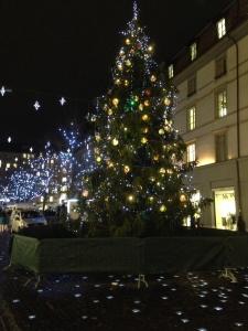 ジュネーブ クリスマス 2014