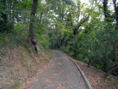土屋の小道