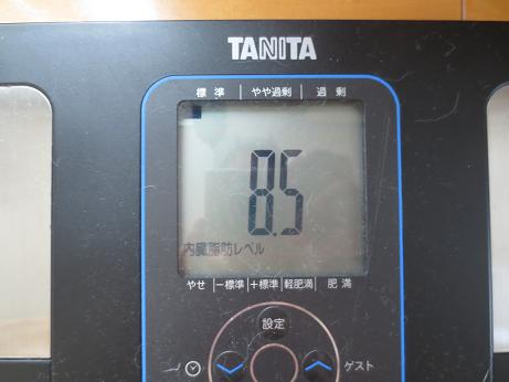 マラソン後、内臓脂肪レベル