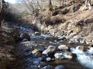 渓流散歩2 (4)