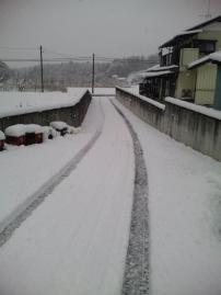 2012,2,29 yuki  (2)