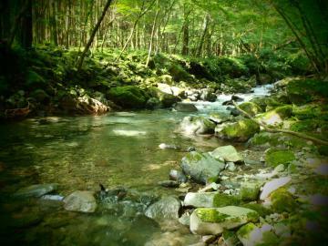 2012 鬼怒川水系4 (2)