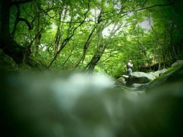 2012 鬼怒川水系6 (4)