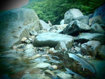 2012 鬼怒川水系8 (2)