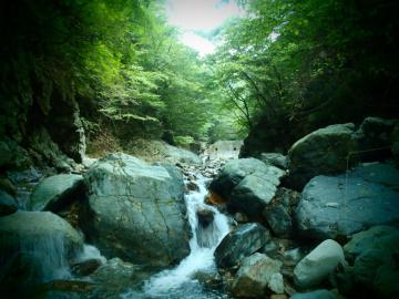2012 那珂川水系4 (2)