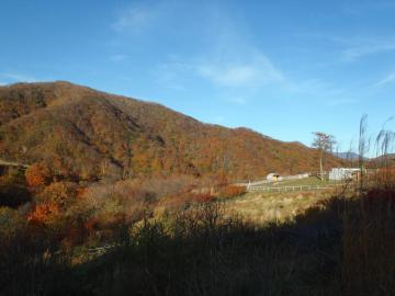 2012 紅葉狩り (16)