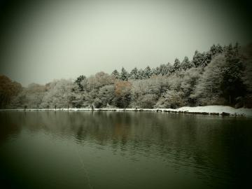 2012尚仁沢AF (3)
