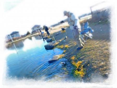 2013 関根養魚場 (3)