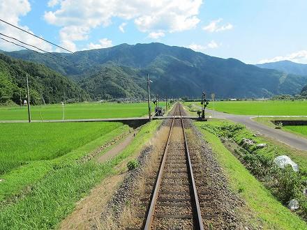 IMG_1163wakasutake.jpg
