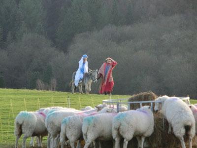 Nativity03.jpg