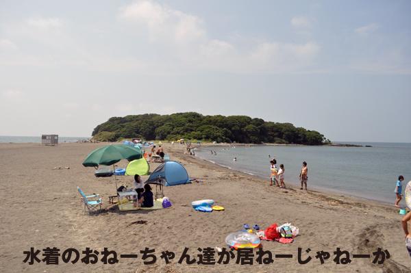 DSC_0319.jpg