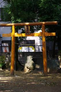 IMGP2008s.jpg