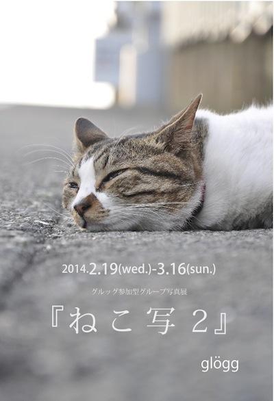 ねこ写2DM