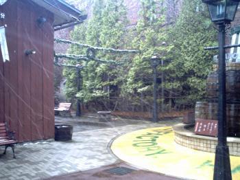 2010_12_24_09_16_36.jpg