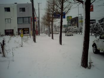 2010_12_25_09_56_38.jpg