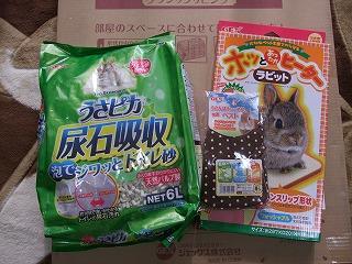 2013-12-11 ヘイフェスくじ2