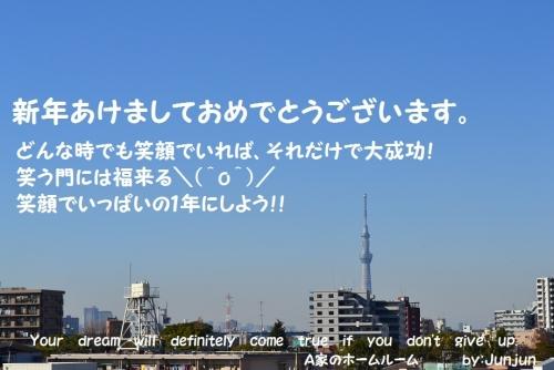 001_201401010046291d9.jpg