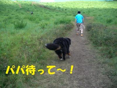 CIMG5950.jpg