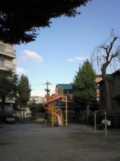NEC_2495.jpg