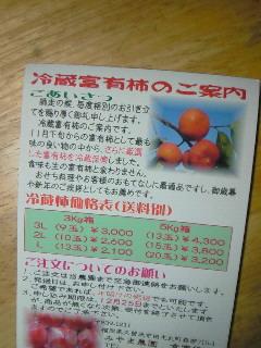 NEC_2603.jpg