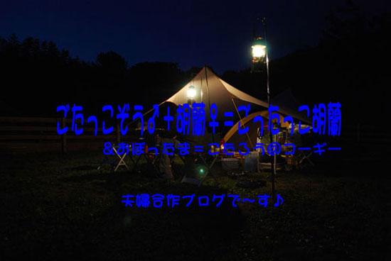 2011_0213_1.jpg