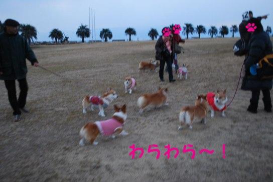 2011_0214_10.jpg