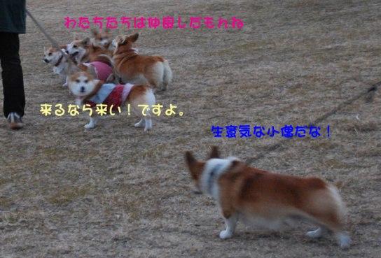 2011_0214_12.jpg