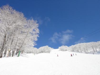 青い空(1)