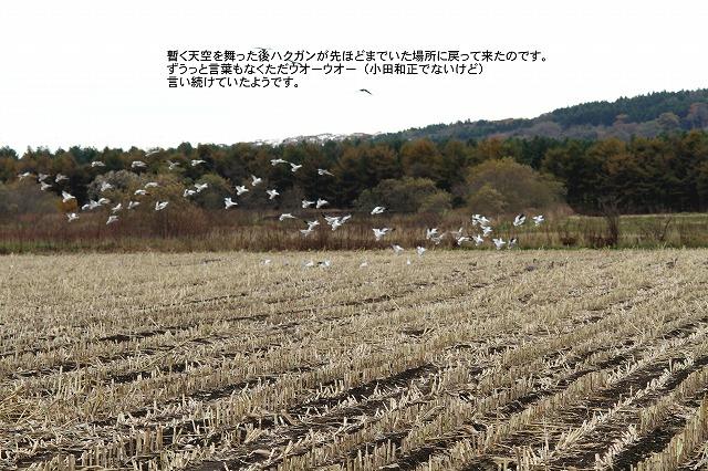 IMG_07361
