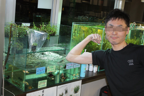 俺はロックアップすれば誰なのかわかるぜ!! 岐阜熱帯魚水草販売Grow aquarium